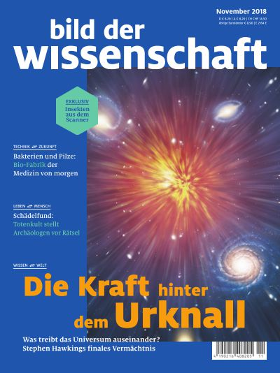 Titelbild bild der wissenschaft 11