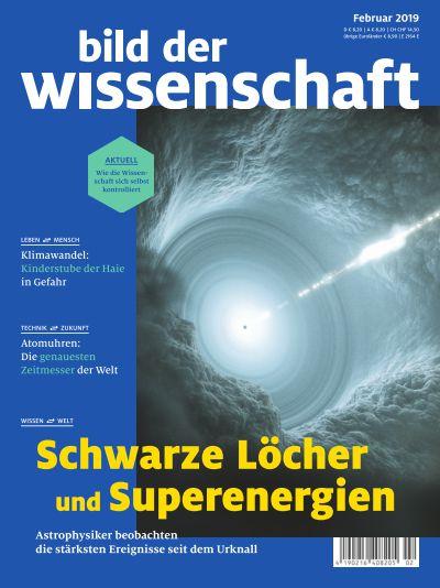 Titelbild bild der wissenschaft 2