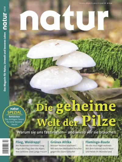 Titelbild natur 10